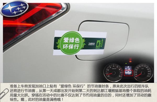 """""""认养""""国宝 四川卧龙/都江堰自驾之旅"""