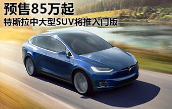 特斯拉中大型SUV将推入门版 预售85万起