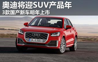 奥迪将迎SUV产品年 3款国产新车明年上市-国产-国产suv新车2 TOM汽高清图片