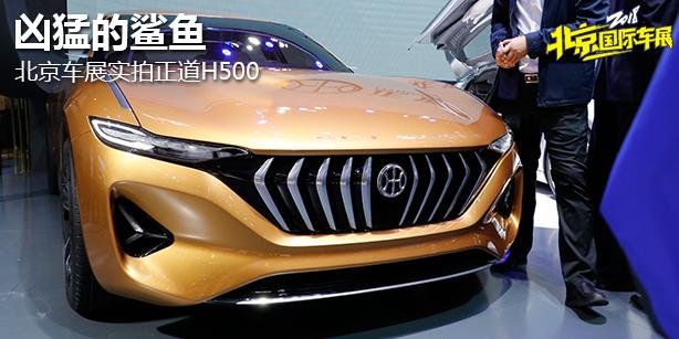 凶猛的鲨鱼 北京车展实拍正道H500